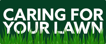 Lawn care information